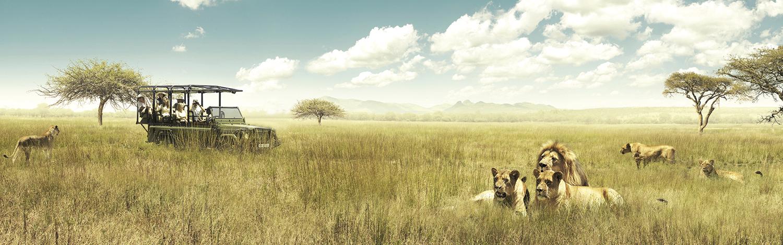 Bandeau-AfriqueSud