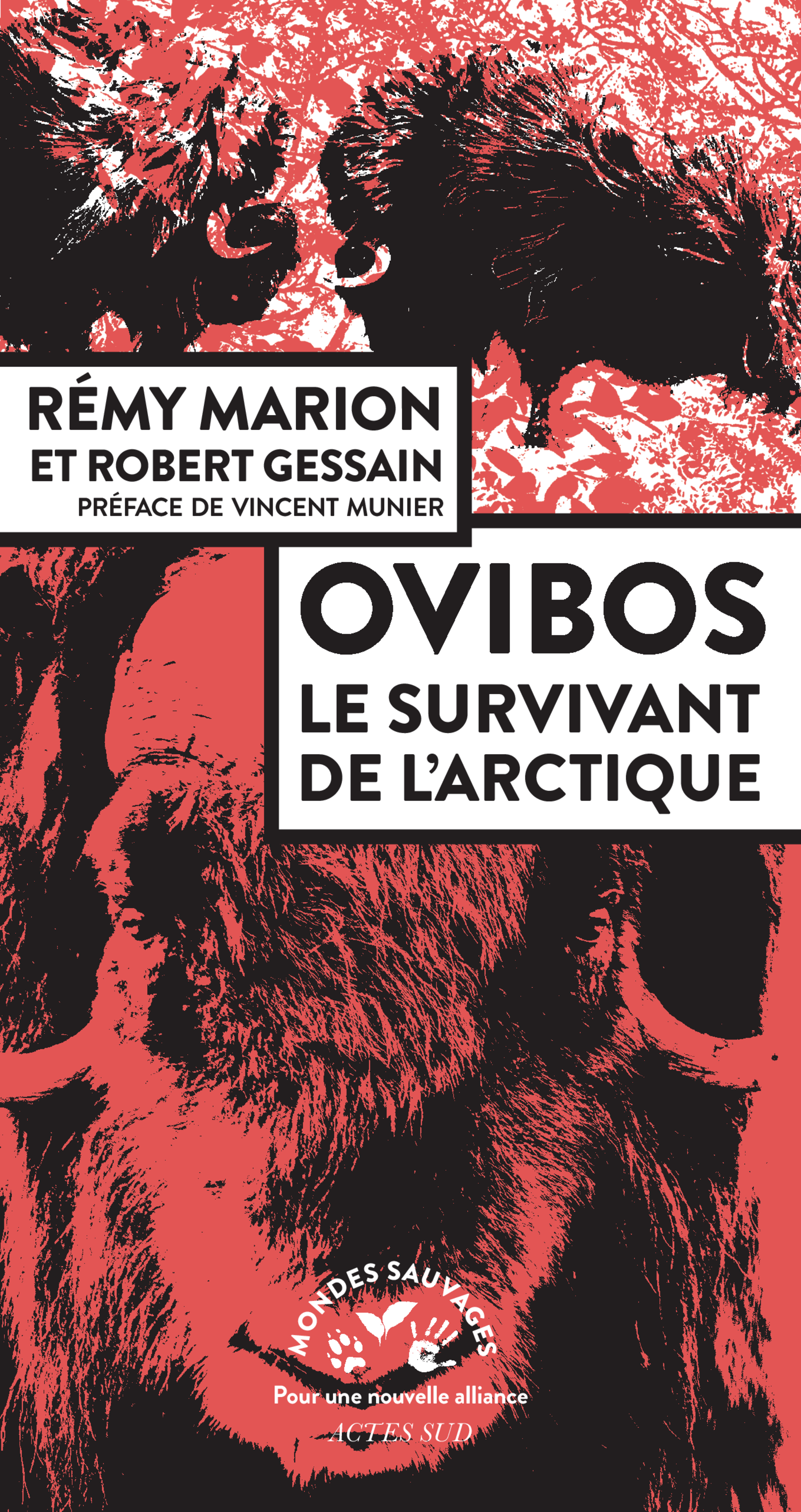 MARION Remy